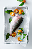 Oven ready fish red snapper with tangerines