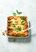 Gratin crepes with asparagus and mozzarella