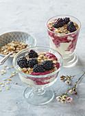 Ricotta blackberry dessert with oat flakes