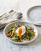 Legume salad with poached egg