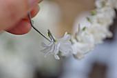 Weiße Fliederblüten für Kranz auf Draht fädeln