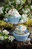 Muffins with a cream cheese topping and hawthorn flowers