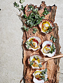 Scallops in paperbark with sake, pepperberry and desert lime