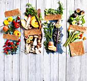 Obst und Gemüse für die vier Jahreszeiten