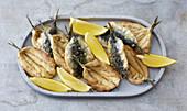 Hamsi tava – fried anchovies (Turkey)