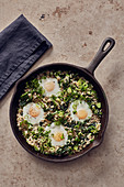 Fried rice with spinach, spring onions and eggs