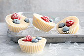 Frozen yoghurt cups with berries