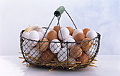 Metal basket with lots of white and brown eggs and straw