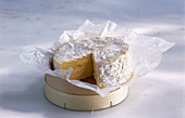 Trimmed camembert on a box with paper