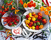Different kinds of chilli, peppers, and nasturtium