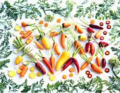 Various organically grown carrots