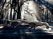 Cryolophosaurus dinosaurs, illustration