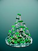 Bacterial replication, conceptual illustration