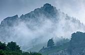 Foggy mountaintop, Italy