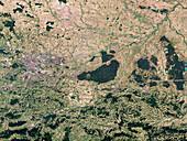 Niepolomice Forest, Poland, satellite image