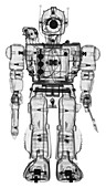 Toy warrior, X-ray