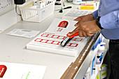 Pharmacist packaging prescriptions