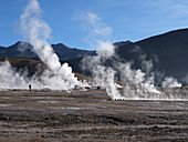 Steam rising from numerous geysers at El Tatio, Chile