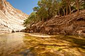 Ein Avdat National Park, Israel