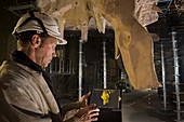 Construction of Caverne du Pont d'Arc, France