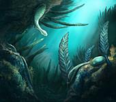 Ediacaran fauna, illustration