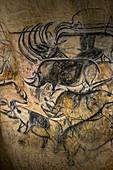 Rhinoceros cave art, Chauvet Cave replica, France