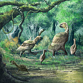 Gastornis birds, illustration