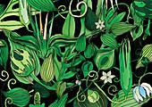 Foliage, illustration