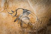 Rhinoceros artwork, Chauvet Cave replica, France
