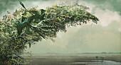 Microraptor dinosaurs, illustration