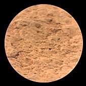 Martian rock, Perseverance image