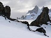 Chinstrap penguin colony on Half Moon Island, Antarctica