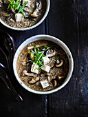 Chinese Hot and Sour Mushroom Soup