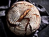 Homemade farmer's bread