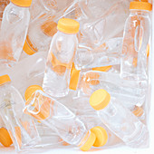 Chilled plastic water bottles