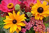 Sonnenhut, Zinnie, Schafgarbe und Witwenblume im Sommerblumenstrauß
