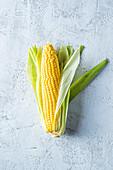 A corn on the cob
