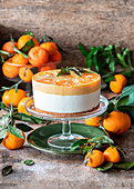 Tangerine curd cake no bake