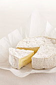 Camembert cheese in white paper