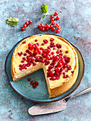 Cheesecake wirh red currant