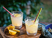 Ginger coolers