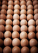 Brown eggs stacked in rows in a French kitchen