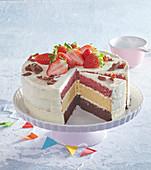Tricolour cake (gateau)