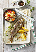 Roasted trout with black salfity ragout