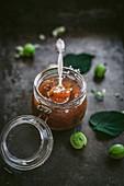 Gooeberry jam