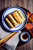 Fried spring rolls (China)