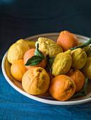 Sicilian citrus fruit cedro lemon and oranges