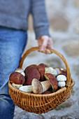 Person holding basket of porcini mushrooms