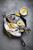 Rohe frische Seebrassen mit Zitrone, Kräutern und Gewürzen in der Pfanne