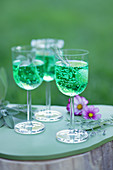 Three fizzy cocktail glasses with herbs